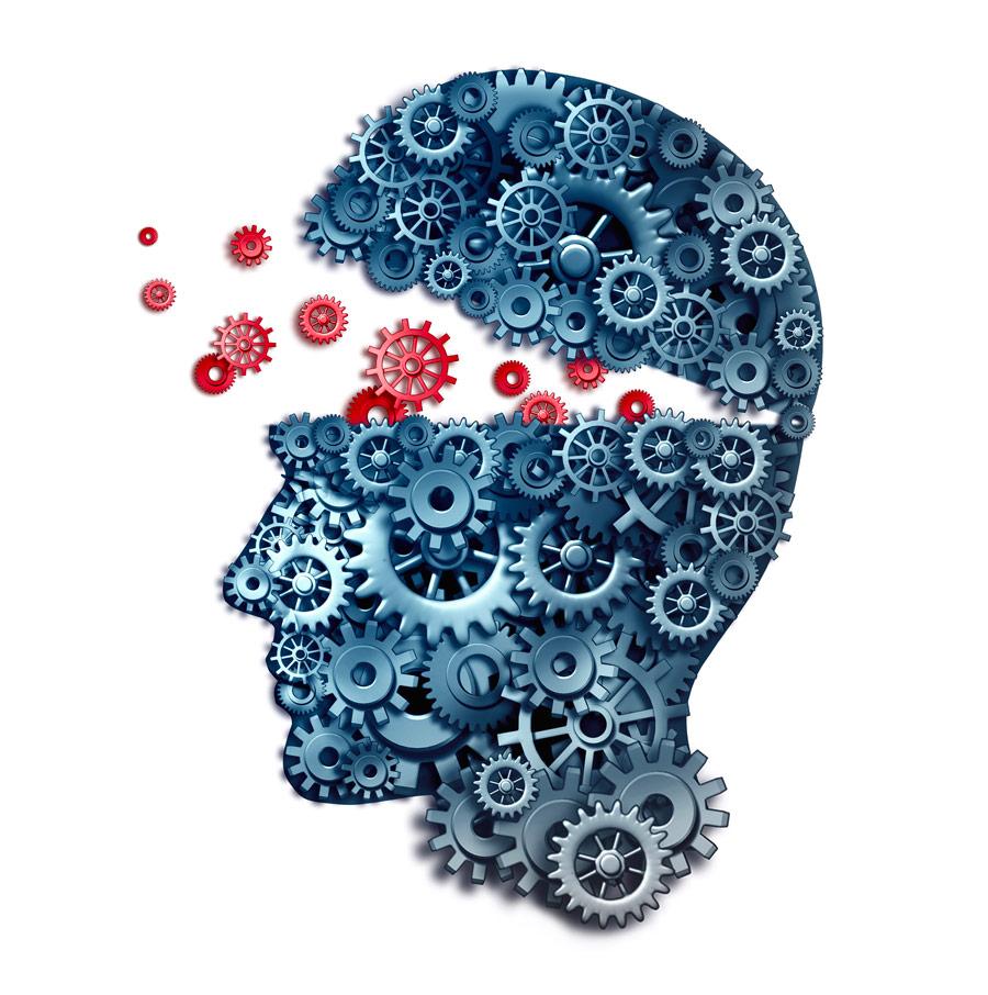 Neurolanguage Coaching® | DANIELA BONVICINI